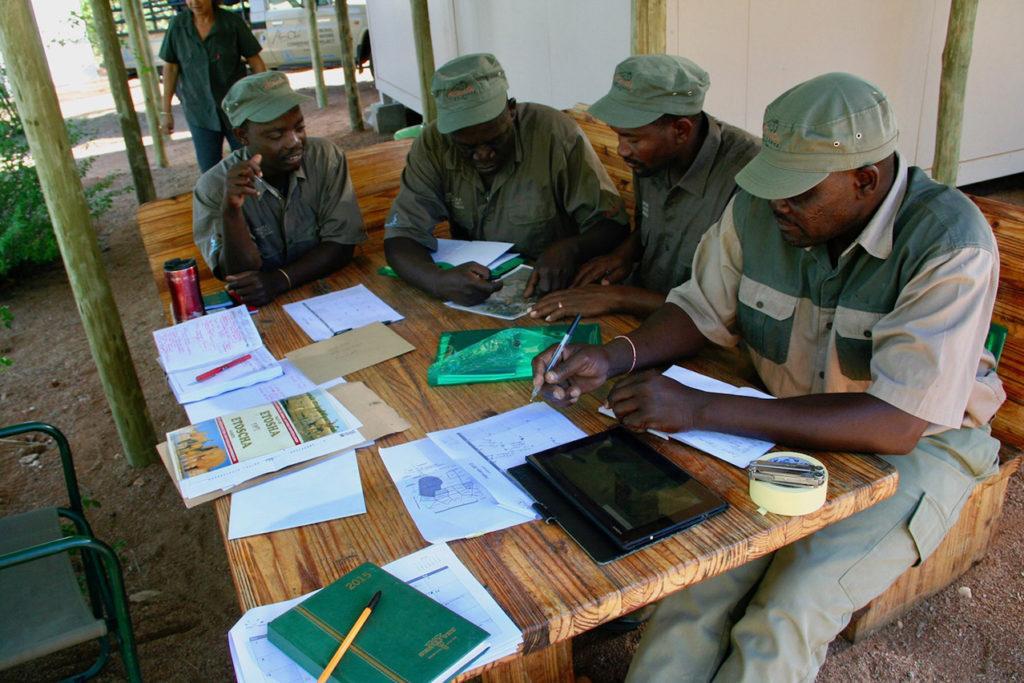 Namibian Lion Trust gaurds hard at work